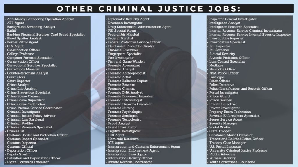 other criminal justice jobs