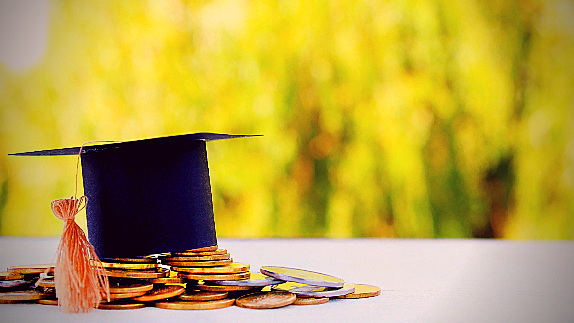 scholarships - masters featured image