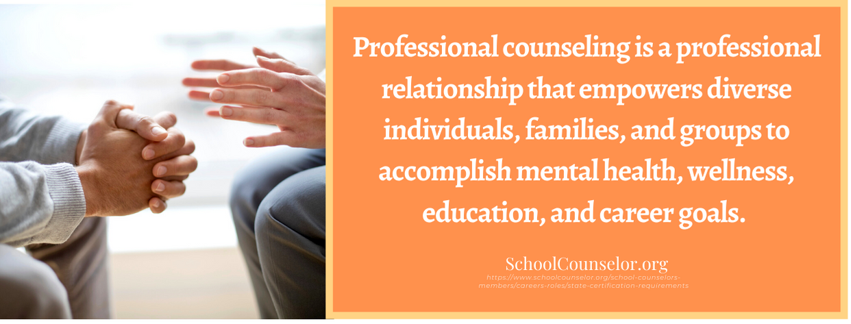 online professional master's in counseling