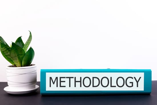 METHODOLOGY inscription on an office folder lying on a dark table with a flowerpot and flower on a light background