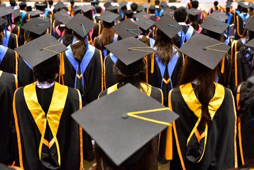 best grad schools doctorates