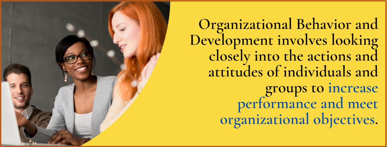 Master's of Organizational Behavior and Development fact 3